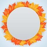 Autumn Leaves Pattern rojo y amarillo Imagenes de archivo