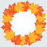 Autumn Leaves Pattern rojo y amarillo Imagen de archivo libre de regalías