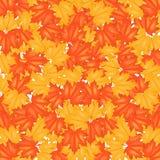 Autumn Leaves Pattern rojo y amarillo Fotos de archivo libres de regalías