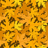 Autumn leaves pattern. Autumn seamless pattern with leaves bed Royalty Free Stock Photography