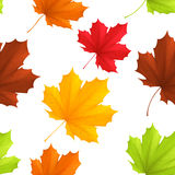 Autumn leaves pattern. royalty free illustration