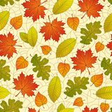 Autumn leaves pattern. Seamless pattern with colorful fall leaves on a natural background Stock Photo