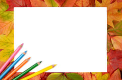 Autumn leaves pencils and sheet of paper Royalty Free Stock Photo