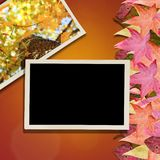 Autumn Leaves and Photo Background Stock Photography