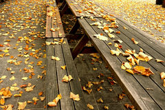 Autumn leaves on picnic tables Stock Images