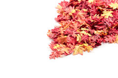 Autumn leaves on a pile. A pile of artificial autumn leaves royalty free stock photos
