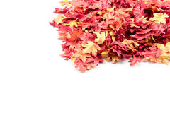 Autumn leaves on a pile. A pile of artificial autumn leaves royalty free stock photography