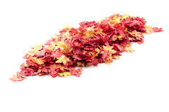 Autumn leaves on a pile. A pile of artificial autumn leaves stock photo