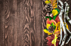 Autumn leaves pinecone top view branch still Royalty Free Stock Image