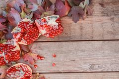 Autumn leaves and pomegranate. Ripe sliced pomegranate still life with yellow leaf stock images