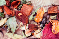 Autumn leaves and pot pourri Royalty Free Stock Image