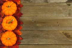 Autumn leaves and pumpkin border Stock Photography
