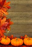 Autumn leaves and pumpkin border Royalty Free Stock Image