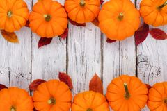 Pumpkin and leaves double border over rustic white wood Stock Images