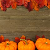 Autumn leaves and pumpkin frame Royalty Free Stock Images