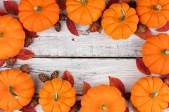 Pumpkin and leaves frame over rustic white wood. Autumn leaves and pumpkin frame over a rustic white wood background Royalty Free Stock Image