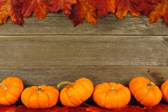 Autumn leaves and pumpkin frame Stock Photo