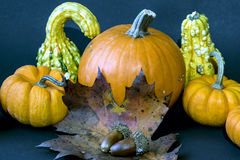 Autumn leaves with pumpkin Royalty Free Stock Image