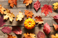 Autumn leaves and pumpkin Stock Photography