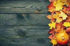 Autumn leaves and pumpkin over old wooden background Stock Images