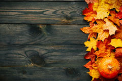Autumn leaves and pumpkin over old wooden background Royalty Free Stock Images