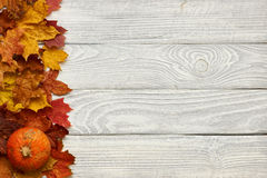 Autumn leaves and pumpkin over old wooden background Stock Image
