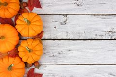 Pumpkin and leaves side border over rustic white wood. Autumn leaves and pumpkin side border over a rustic white wood background Royalty Free Stock Photos
