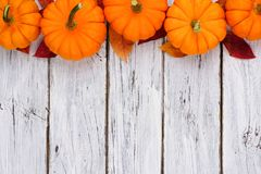 Pumpkin and leaves top border over rustic white wood Royalty Free Stock Photography