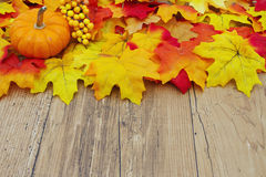 Autumn Leaves and Pumpkin on a Weather Wood Background Stock Images