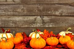Autumn leaves and pumpkins against an old wood background Royalty Free Stock Image