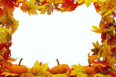 Autumn Leaves and Pumpkins Background Stock Photography