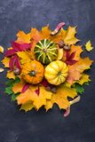 Autumn leaves and pumpkins over dark concrete background with copy space. Mockup for seasonal offers and holiday post card. Top view stock images