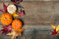 Autumn leaves and pumpkins Stock Photos