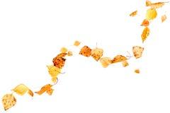 Autumn Leaves que cae Imagen de archivo libre de regalías