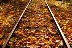 Autumn leaves on the railway Royalty Free Stock Photos