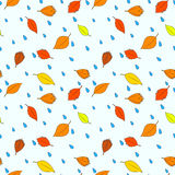 Autumn leaves and raindrops seamless pattern Stock Images