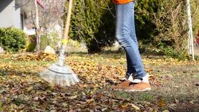 Autumn leaves are raked stock video footage