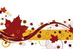 Autumn Leaves in Red. Autumn leaves with large red leaves and abstract design on a white background Royalty Free Stock Photography
