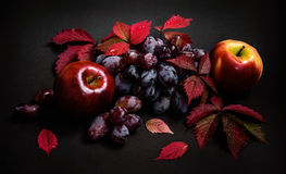 Autumn leaves with red grapes and apples Royalty Free Stock Image