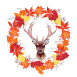 Autumn leaves and reindeer round design vector frame Stock Images