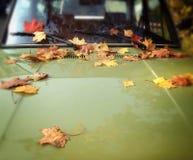 Autumn leaves on retro car. Photo of autumn leaves on retro car royalty free stock image