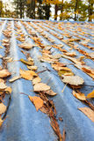Autumn leaves on roof Royalty Free Stock Image
