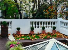 Autumn Leaves Rooftop View stock fotografie