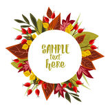 Autumn leaves with rose hip. Vector Illustration Autumn leaves decoration with rose hip Royalty Free Stock Image
