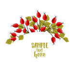 Autumn leaves with rose hip. Vector Illustration Autumn leaves decoration with rose hip Stock Photos