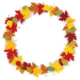 Autumn leaves round frame. Royalty Free Stock Images