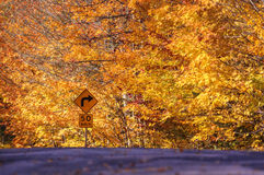 Autumn leaves rural road sign Stock Photography