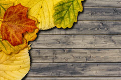 Autumn leaves on the rural wood planks Stock Photos