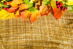 Autumn leaves on sacking Royalty Free Stock Photography