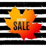Autumn Leaves Sale Banner brillant Carte de remise d'affaires Illustration de vecteur Images libres de droits